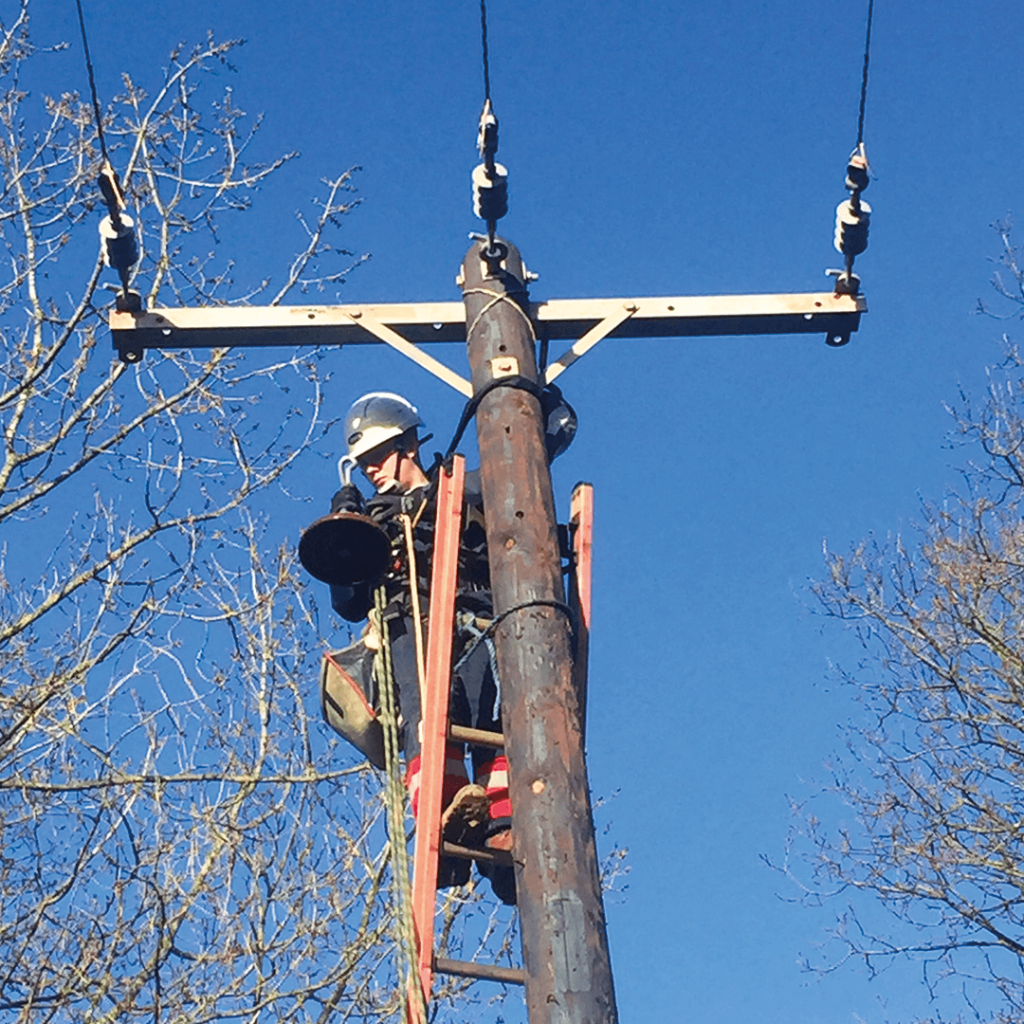 Techinal specialist working on electrical woodpole line from a ladder